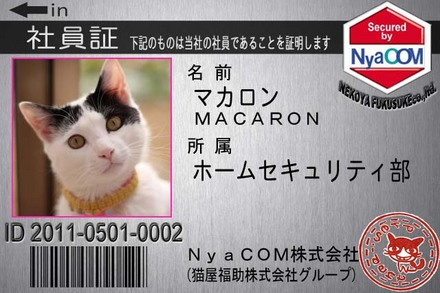 マカロン.JPG