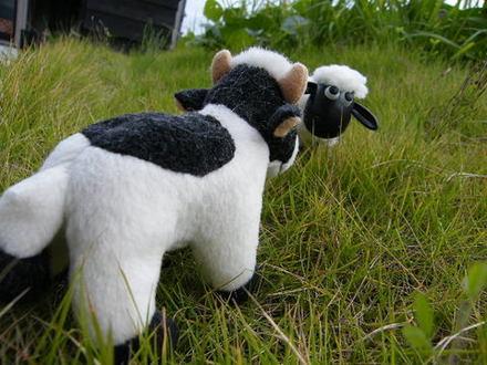 野原でヒツジにあった【cow meet sheep】.jpg