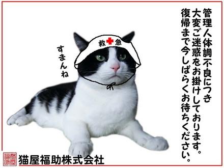佐々木・危篤.jpg